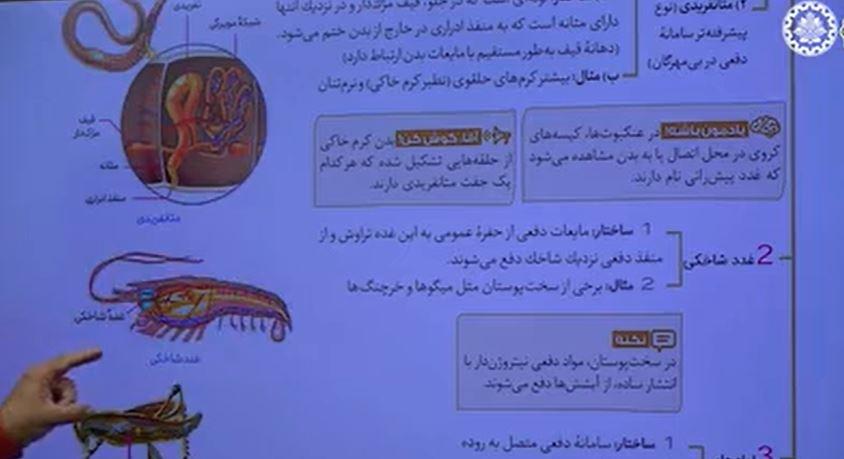 آموزش-زیست-دهم-فصل-پنجم-تنظیم-اسمزی-و-دفع-مواد-4