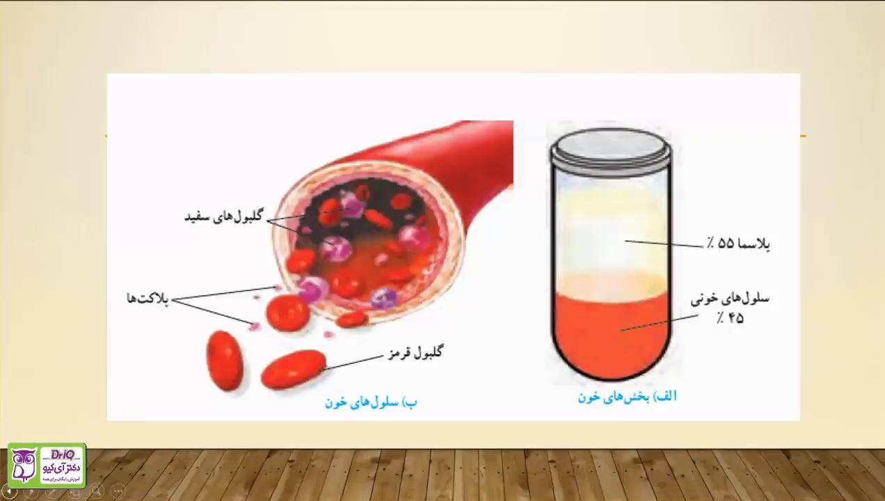 گردش-مواد-اجزای-خون-تدریس-آلا