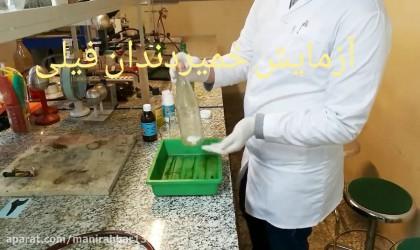 آزمایش خمیر دندان فیلی