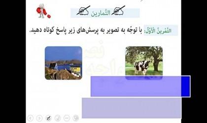 حل-تمرین-عربی-هفتم-درس-سوم