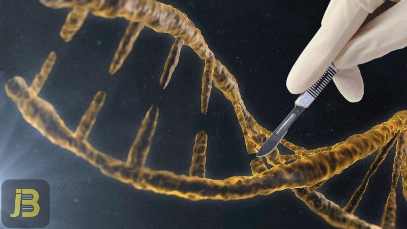 جهش های ساختاری کروموزومی