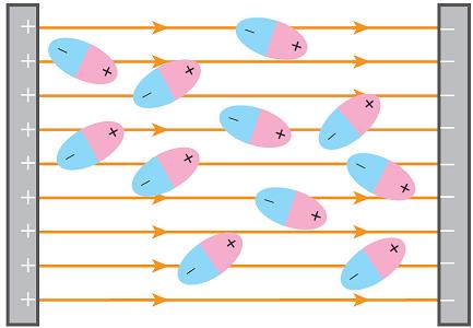 مولکول قطبی در میدان الکتریکی