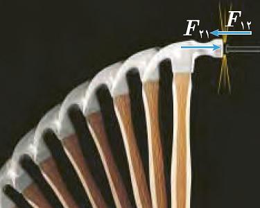 قانون سوم نیوتن